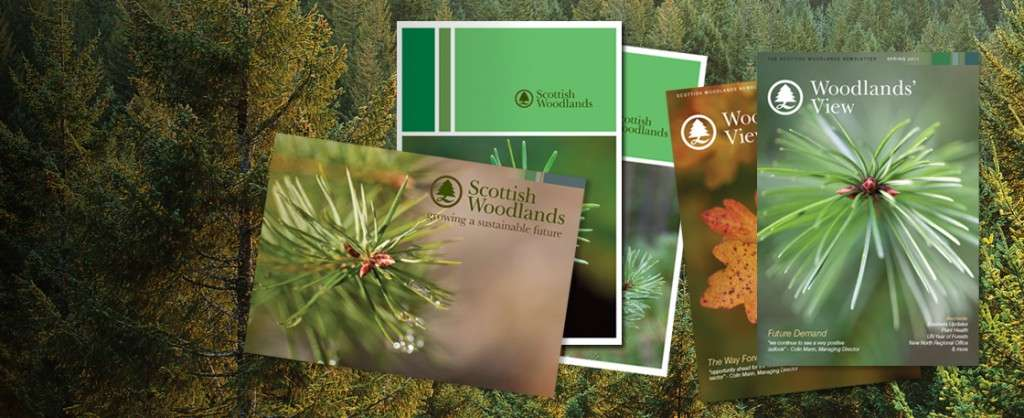 Brochure design for Scottish Woodlands